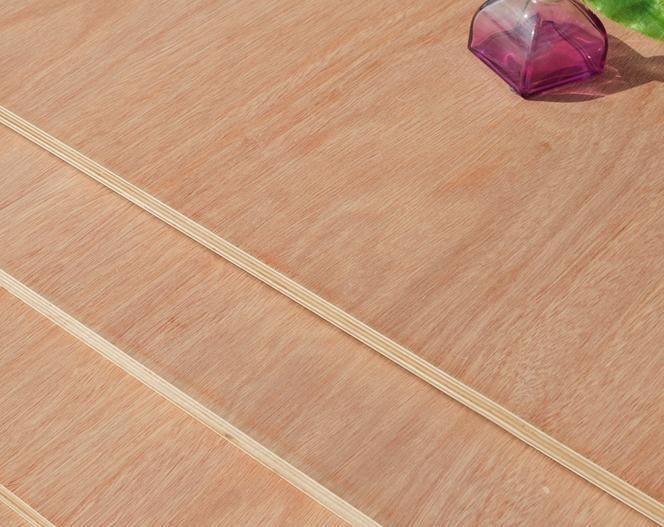 Freeshipping tingkat E0 eucalyptus kayu lapis laminasi papan ambry dada plat 9 MM
