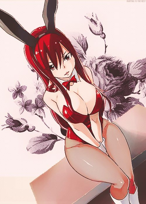 Okay this pic might reveal alot, but you gotta admit, erza looks beautiful as shit