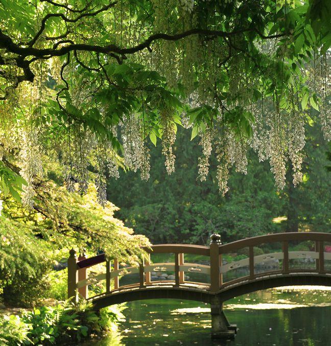 Enchanting bridge at Hatley Park Castle / Vancouver Island ... near Victoria, Canada