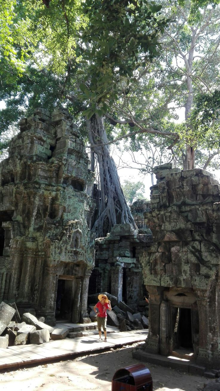 ta prohm temple siem reap cambodia la route pinterest camboya y mundo. Black Bedroom Furniture Sets. Home Design Ideas