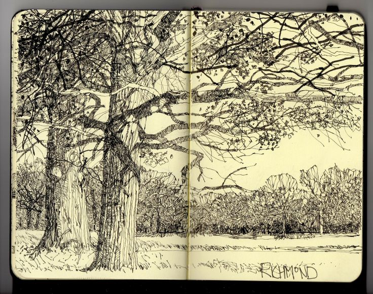 Line Drawing In Html : 51 best apprendre à dessiner des paysages images on pinterest