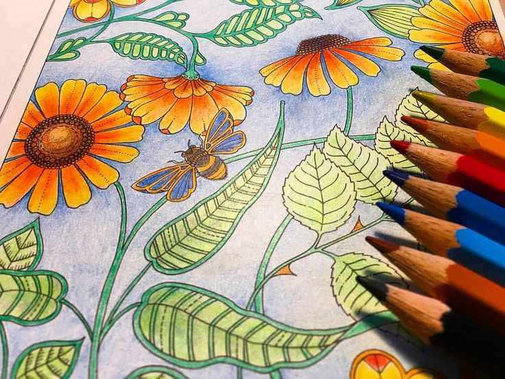 Использованные цвета для раскраски #coloringbook #adultcoloring #pencil #fabercastell #johannabasford #secretgarden #johannabasfordsecretgarden