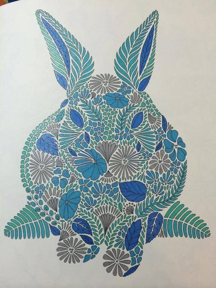 Adult Colouring Book See More Millie Marottas Animal Kingdom