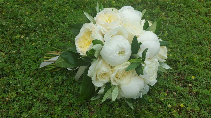 Peonie rose inglesi