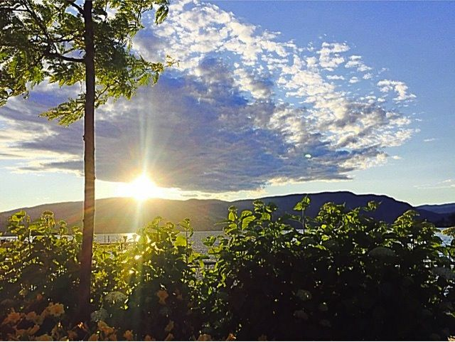 Perfect Sunset in Kelowna Photo Courtesty IG @joleneiglesias ♥ Meet new friends and singles in the Okanagan. Ultimate Social Club 250-938-4412