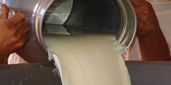 Líder é um dos leites adulterados que a Secretaria da Saúde do Paraná determina recolhimento - http://projac.com.br/brasil-mundo-e-variedades/lider-e-um-dos-leites-adulterados-que-a-secretaria-da-saude-do-parana-determina-recolhimento.html