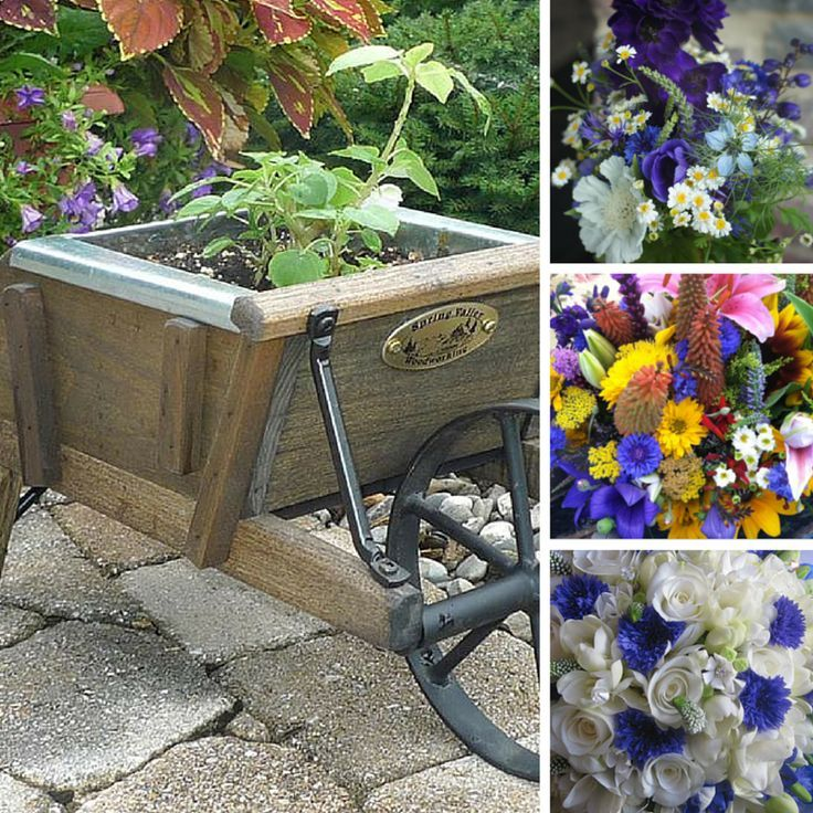 Growing Love: The Wedding Garden Planter by DutchCrafters