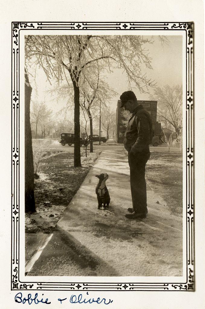 Vintage #bostonterrier snapshot