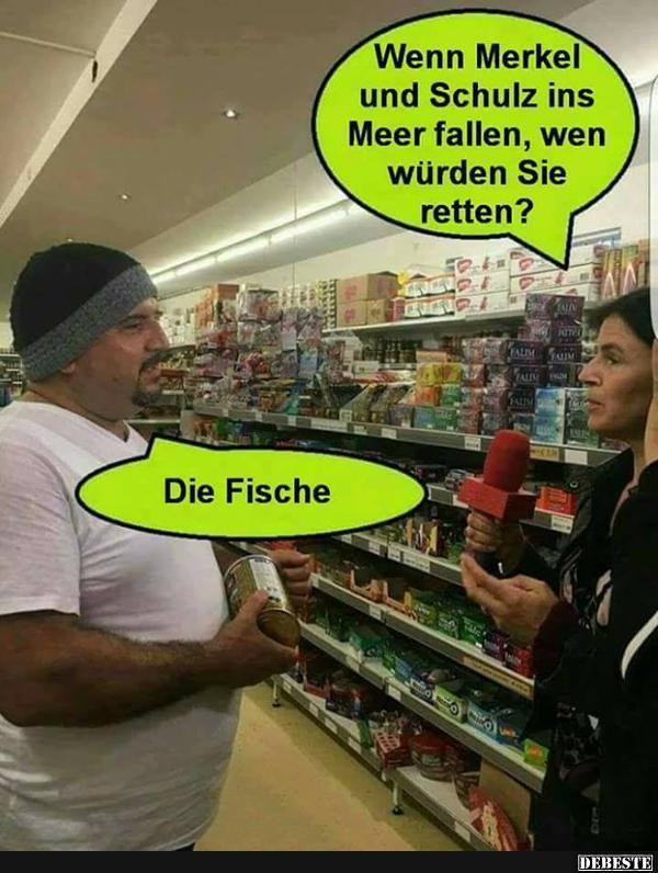 Wenn Merkel und Schulz ins Meer fallen.. | Lustige Bilder, Sprüche, Witze, echt lustig