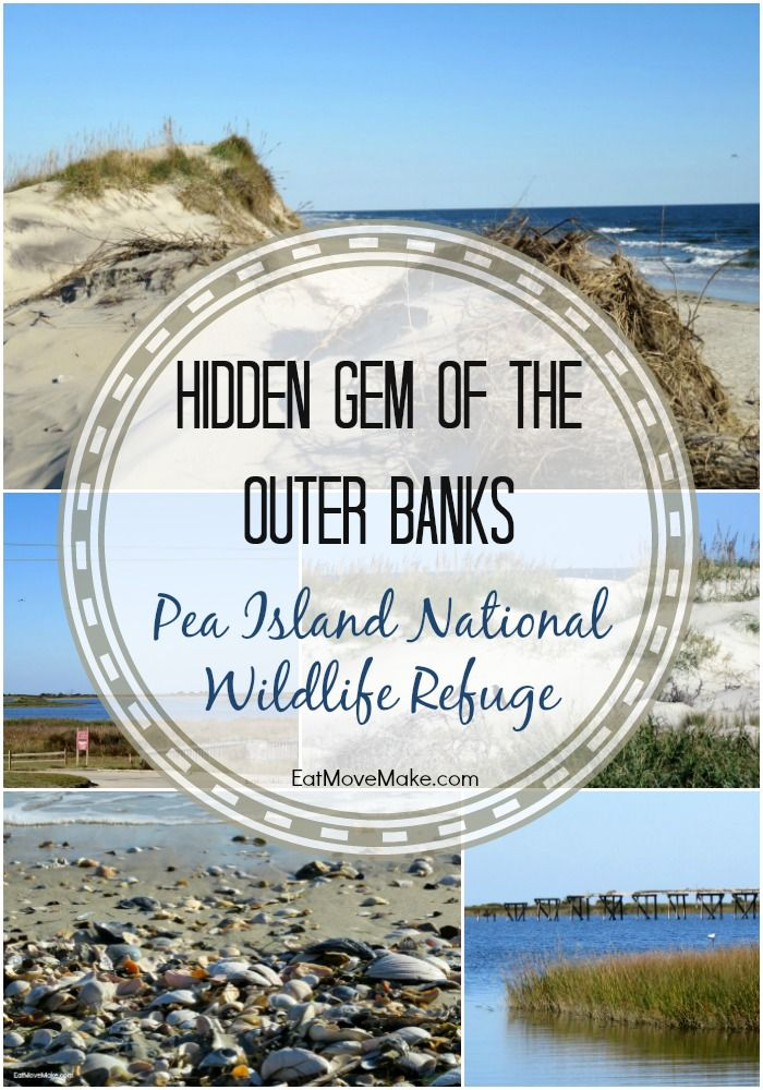 Pea Island National Wildlife Refuge is a hidden gem in The Outer Banks. Find it on Hatteras Island in Rodanthe. OBX!