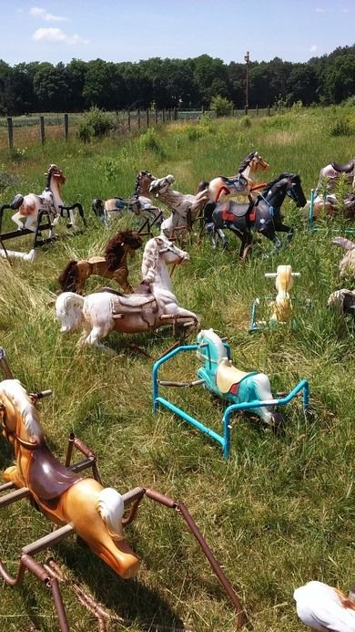 No one really knows how these old hobby horses got here, but the herd keeps growing.