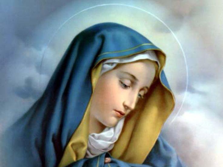 Nel Nome del Padre, del Figlio e dello Spirito Santo. Amen. O Dio, vieni a salvarmi. Signore, vieni presto in mio aiuto. Gloria al Padre Mio Dio, ti offro