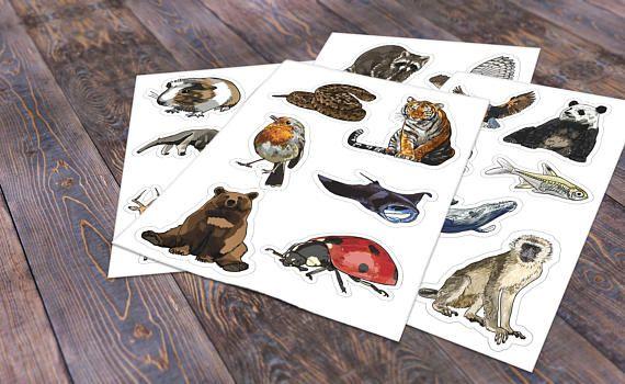 Animal Alphabet sticker set