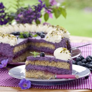 Anneliese Hackler sammelt nicht nur leidenschaftlich gerne Heidelbeeren, sondern auch Rezepte rund um die kleinen blauen Beeren. Neben einem...