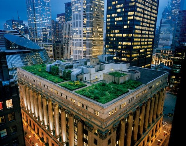 Green Roofs by Diane Cook and Len Jenshel
