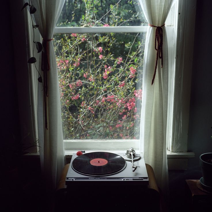 by peter baker: Music, Old Records, Window, Happy Day, Peter O'Tool, Records Players, Sweet Girls, Bohemian Home, Portland Oregon