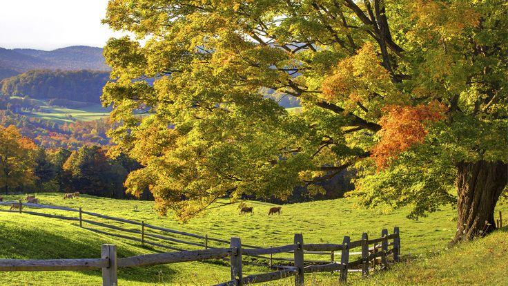 farm landscapes | wallpaper, scenery, desktop, wallpapers ...