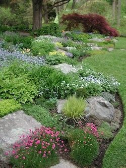 Rock Garden - back hill, great for our sloped back yard. Why didn't I think of this for the ski slope in my back yard