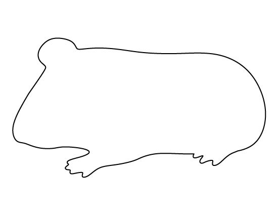 Guinea Pig Pattern. Use The Printable Outline For Crafts