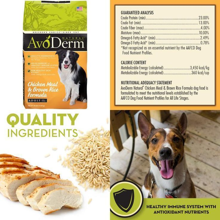 Natural Dog Food Chicken Meal And Rice 30 Lb Healthy Skin &Amp; Coat No Artifici #AvoDerm,#dog,#food,#cat,#energy,#strong,#health,#dry,#pet,#protein,#natural