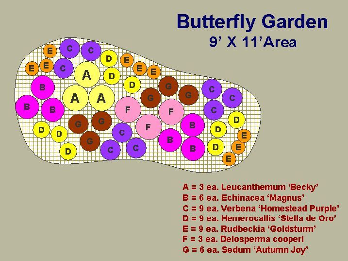 1000 Images About Garden Attracting Butterfly S Free To 400 x 300