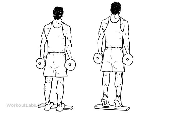 Standing Dumbbell Calf Raises