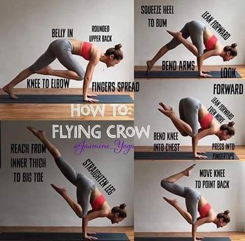 Cuervo volador :: Flying crow