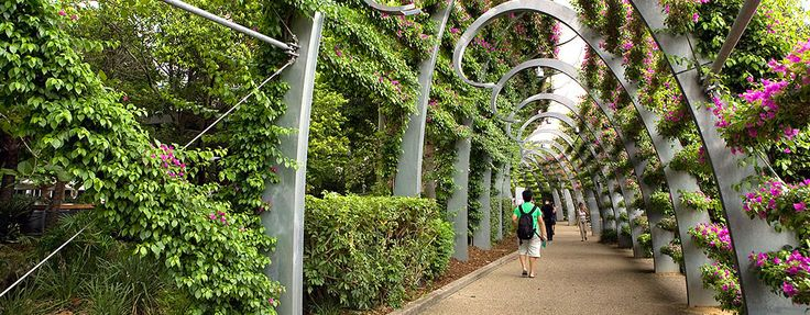 Ronstan cables used on brisbane 39 s southbank arbour for Landscape architecture courses brisbane