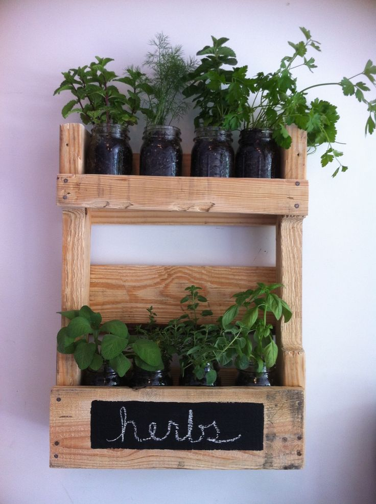 Hang on the wall herb rack using ball jars and potting soil and selected herbs.