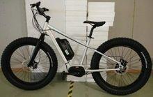 250 w motor sin escobillas bicicleta eléctrica hummer bicicleta importador de precios de China