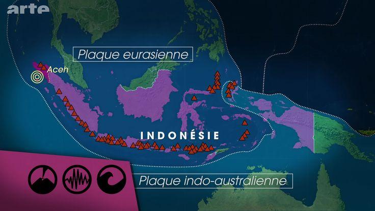 Le pays est à la jonction des plaques tectoniques eurasienne et indo-australienne, ce qui explique la présence de nombreux volcans sur le territoire indonésien mais aussi les séismes et les tsunamis qui touchent le pays. On se souvient du tsunami de 2004, qui aurait fait près de 170 000 morts rien que dans la province d'Aceh. (Le dessous des cartes - INDONÉSIE, NOUVEL ÉMERGENT | ARTE)