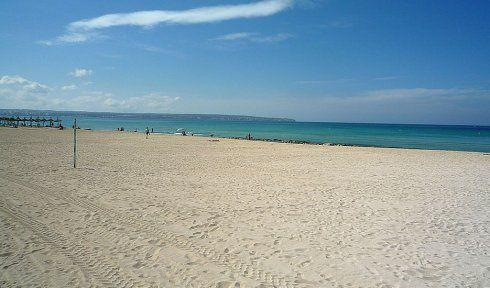 http://www.seemallorca.com/beaches/playa-de-palma-beach-majorca-palma-de-mallorca-661001