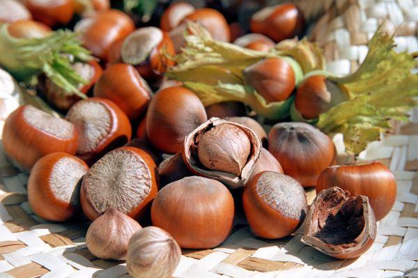 Hazelnut & Rosemary Gnocchi: cook gnocchi, add rosemary, hazelnuts, butter, salt, pepper
