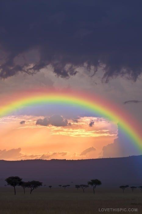 beautiful rainbow photography colorful sky beautiful nature clouds trees rainbow
