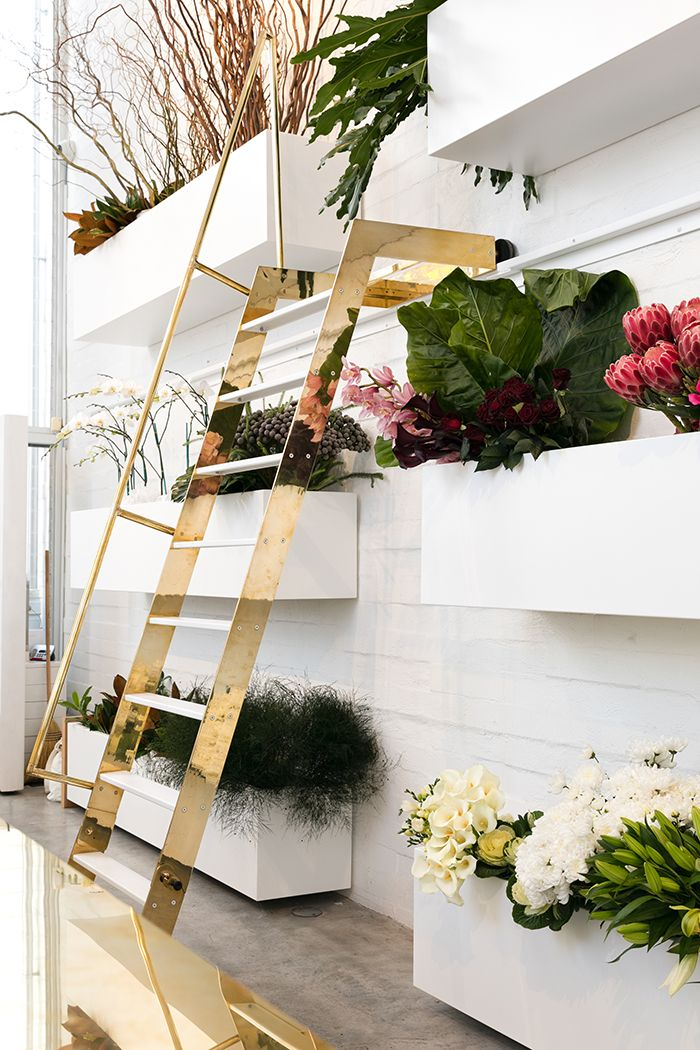 Brass Ladder The Purdiest Interior Design For A Modern NZ Florist Photography By Michelle Weir Studio