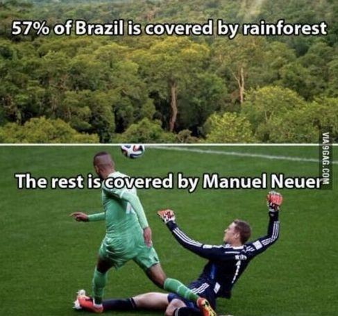 WM 2014 - Ger vs Alg