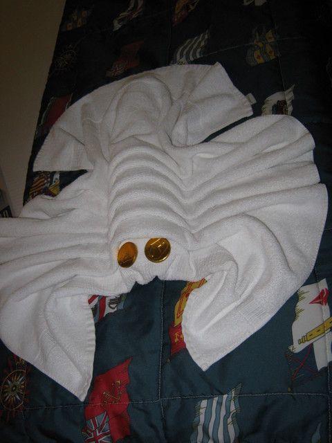 towels animals zwierzta z rcznikw origami z rcznikw