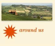 """Agriturismo La Rocca Orvieto"" became my Italian heaven...."