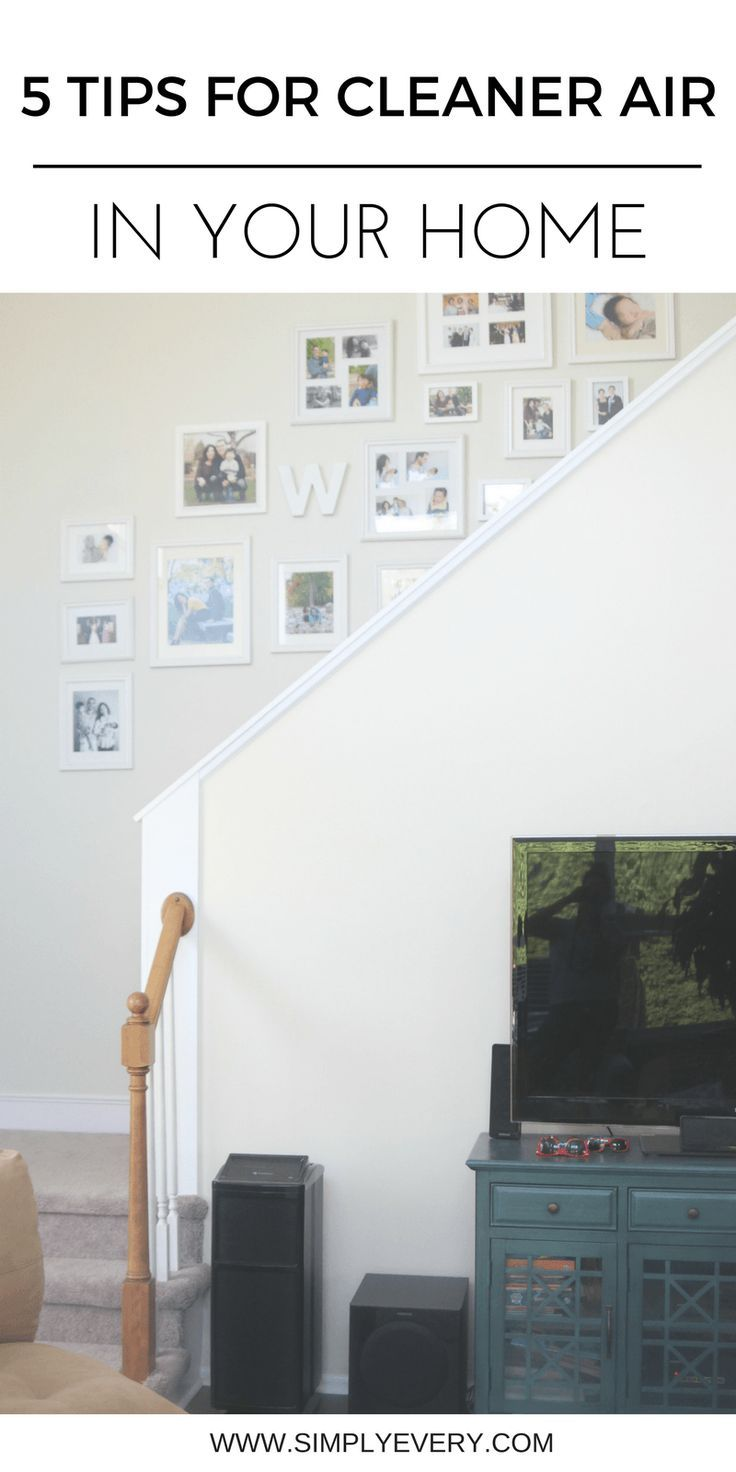 5 Tips for Cleaner Air in Your Home, home tips, cleaning tips, air filter, clean air, home maintenance, clean air, plants, home decor