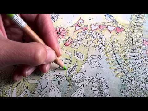 Popular Colored Pencil Drawing Books