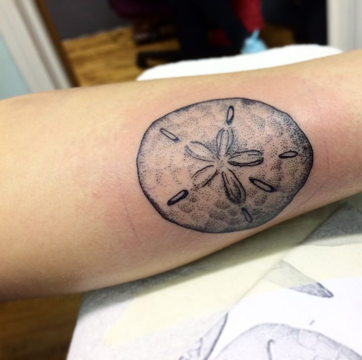 sand dollar tattoo
