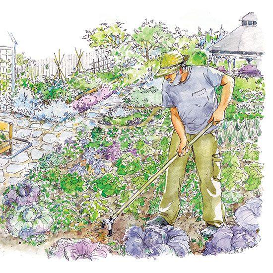 Control Garden Weeds Organically - Organic Gardening - MOTHER EARTH NEWS