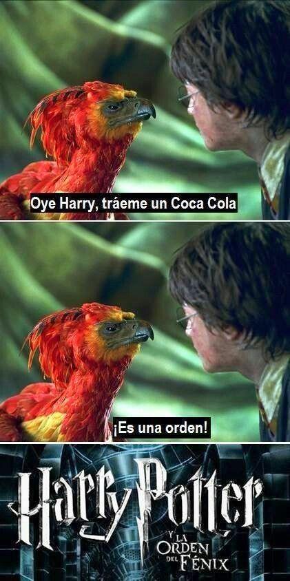 La orden del Fénix. Harry Potter.