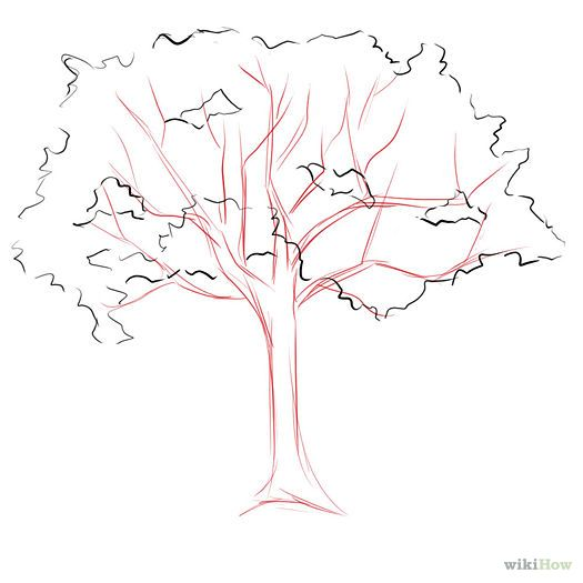 How to draw a cherry tree crafts pinterest how to for How to draw a cherry blossom step by step