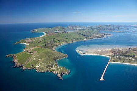 Taiaroa Head, Otago Peninsula, Otago Harbour Entrance, and Aramoana, Dunedin, South Island, New Zealand - aerial