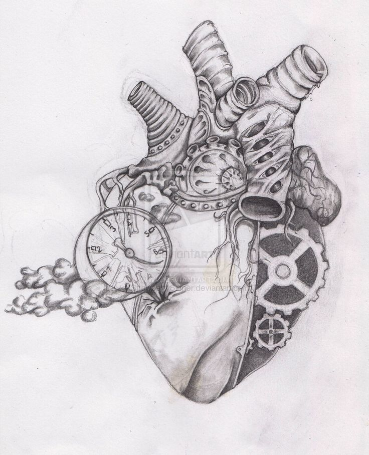human heart drawing - Google Search