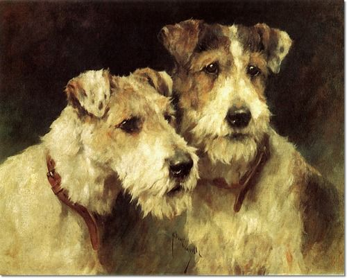 Arthur Wardle - Painting of wire haired fox terriers #dogs #pets #WirehairedFoxTerriers #artwork   facebook.com/sodoggonefunny