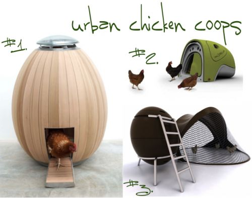 i really want chickens. especially chickens that live in a space age hen house. my husband does not approve