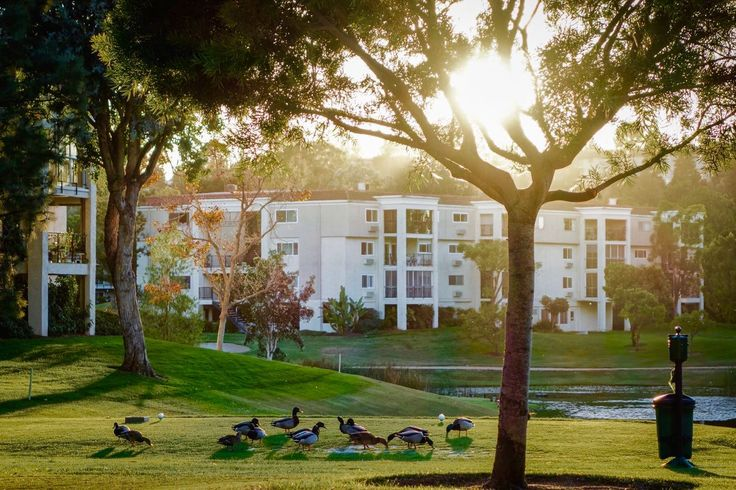 Laguna Woods Village is a lovely active #retirement community in #California. #BabyBoomers love the scenic grounds!