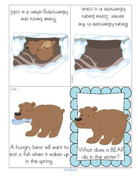 """***FREE***  This is an informational foldable booklet in both color and b/w to use for your early learning Hibernation unit. This is a sample from my resource Hibernating Animals – Activities for Early Learners. The hibernating animals featured are bear, bat, chipmunk, hedgehog, raccoon and snake. Includes 12 foldable booklets; cut and paste scenes; """"finish the picture"""" activities; animal stick puppets; and hibernation environment flash cards."""